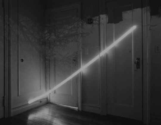 Motohiro Takeda  Untitled, from Another Sun, 2013