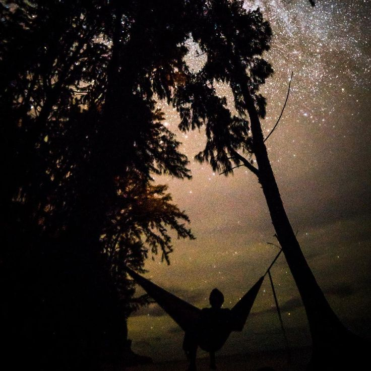Remember To Look Up At The Stars And Not Down At Your Feet Denythedark Stars Litezall Flashlight Outdoorsmen Camping Litezall Tacticalgear Exp