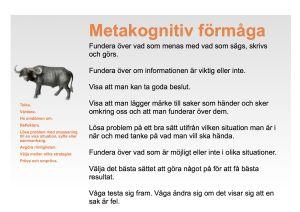 MetakognitivPlanschV3