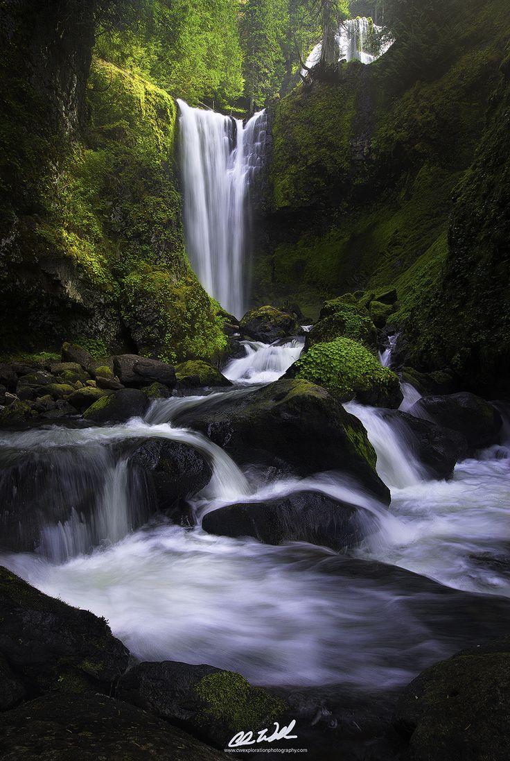 Falls Creek Falls, Washington, USA  (by Chris Williams Exploration Photography)
