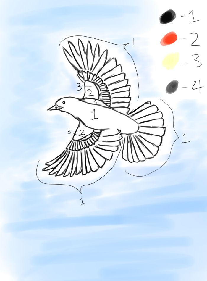 red winged blackbird coloring pages - photo#13