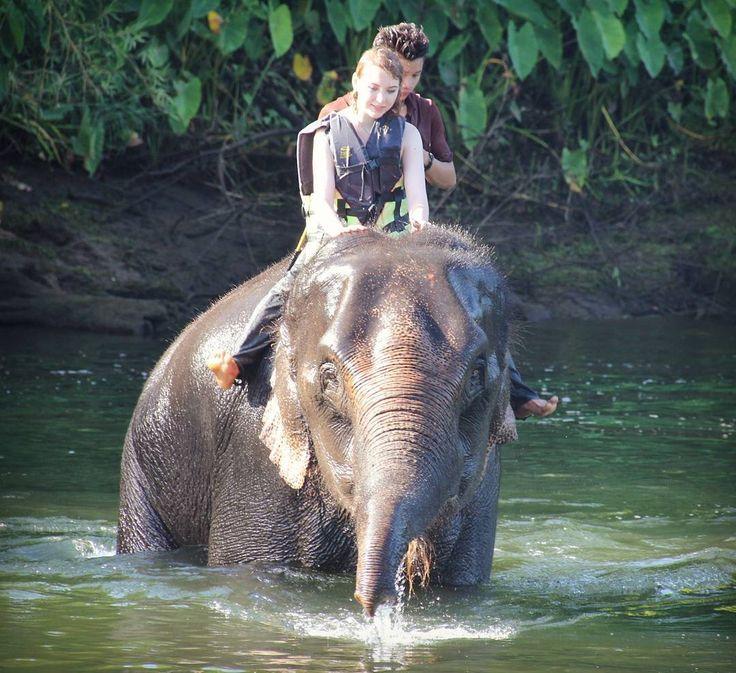 Купание со слоном-одно из самых потрясающих ощущений в жизни!<3 #tailand #swimwithelephant