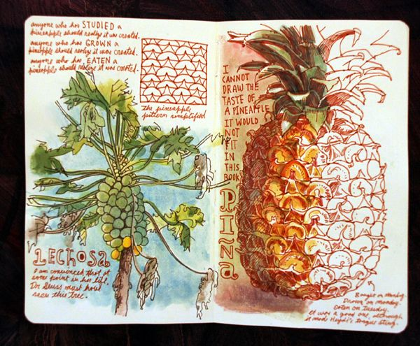 """I cannot draw the taste of a pineapple, it would not fit in this book"" by Sketchbuch"