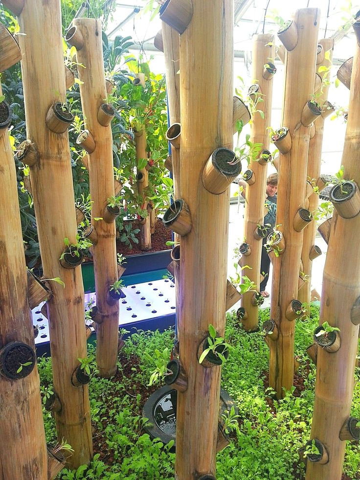 Best DIY Bamboo Design Ideas #diybambooideas | Vertical ...