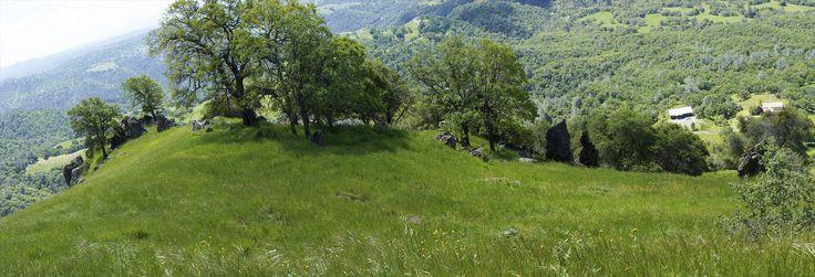 Amador California Jackson Butte Mtn. Ancient. Photo number 17 - tomason33Pics (no copyright)