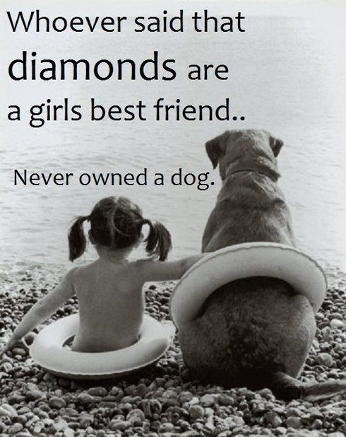 dogs are family: Girls, Animals, Best Friends, Dogs, Quotes, Bestfriends, Pet, Diamond, So True