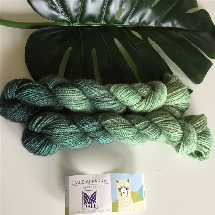 Hand dyed yarn | 100% alpaca | contact if interested