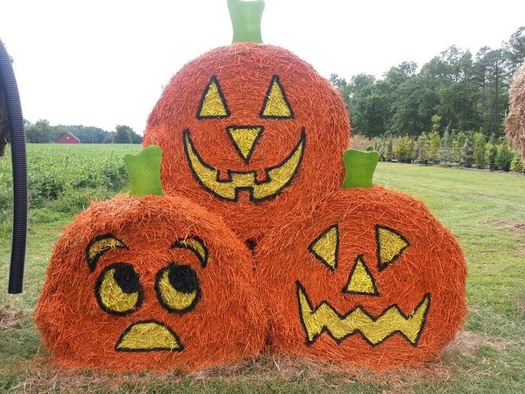"""Love this trio of """"pumpkins."""" Reckon the bottom ones are worried about the one on top?"""