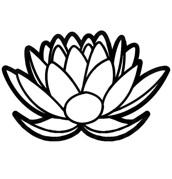Lotus flower floral lotus flower design coloring pages for Lotus flower coloring pages free