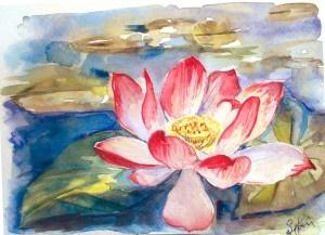 e6bf8edcaa7ed4ffa52a934671d61c10--lotus-blossoms-lotus-flowers.jpg