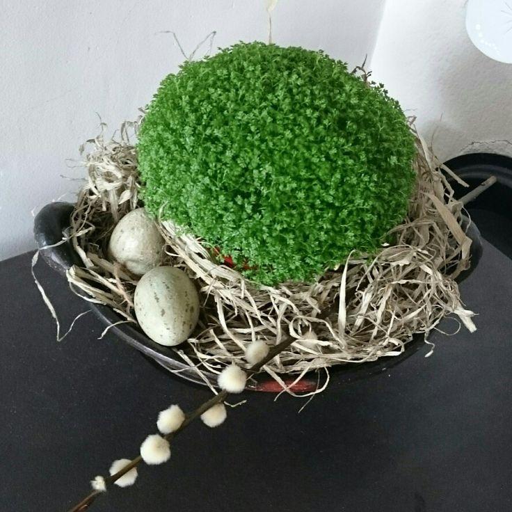 Påske, egg, gåsunger, plante, reir, rede, easter,  nest