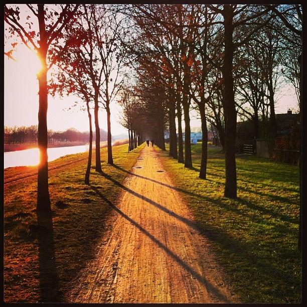 Five stars cycleroute along Twentekanaal Delden - @marcel_tettero- #webstagram