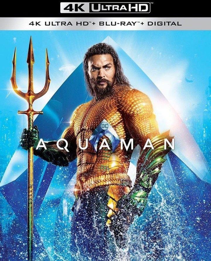 Pin By R S On Dc Comics Jason Momoa Aquaman Aquaman Jason Momoa Movies