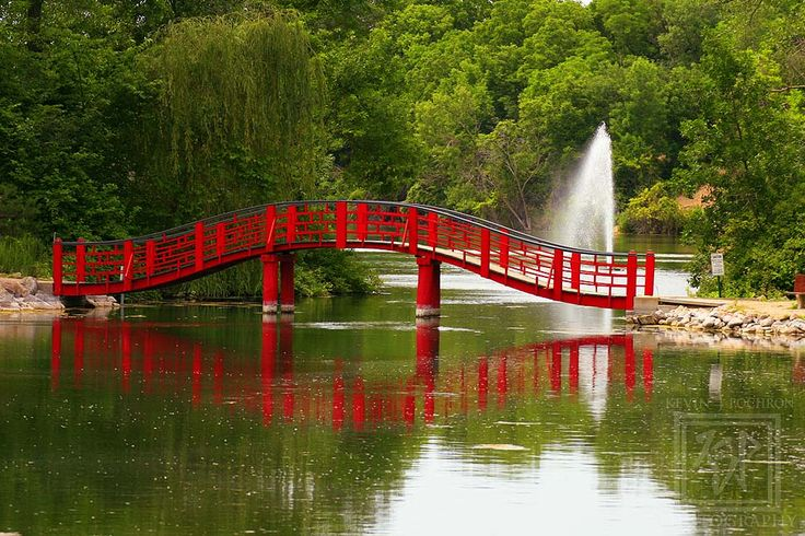 The Japanese Bridge at The Rotary Gardens Janesville, Wisconsin. (7-3-2011)  By: Kevin P. (KJP Photography)