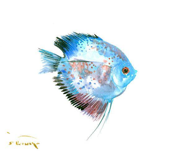 couleurs de l'arc-en-ciel Discus, aquarelle originale, 12 x 11 po, art de poissons aquarium rose violet blue, art de couleurs vives