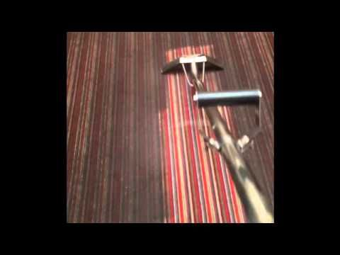 Extreme professional carpet cleaning.