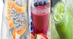 L'importanza assoluta della pulizia e la disintossicazione del colon! Un passo indispensabile per il benessere di corpo e mente grazie ai succhi naturali!