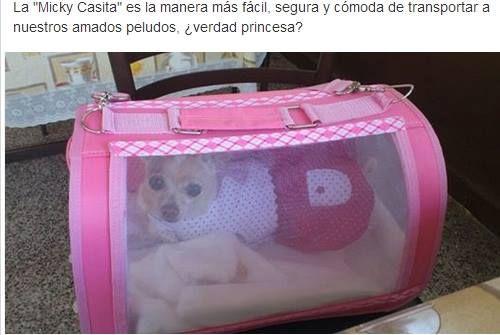 Bolsa transportadora para perros