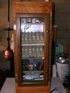 22 Best Incubator Info Images On Pinterest Chicken Coop
