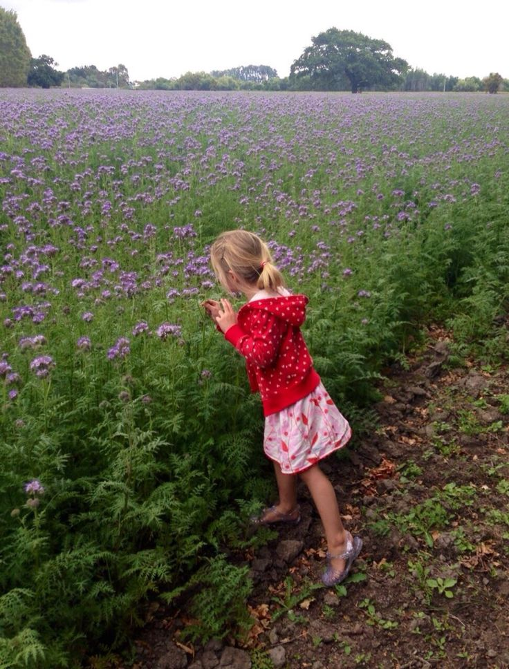 Highly commended. Little girl lots of flowers by Auriga