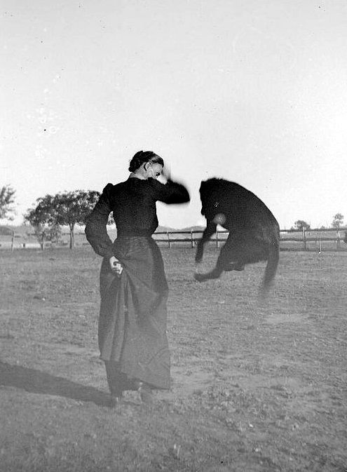 """mudwerks: """" National Library of Australia A woman with a dog jumping in the air, Gundagai, New South Wales, 1 / Charles Gabriel """""""