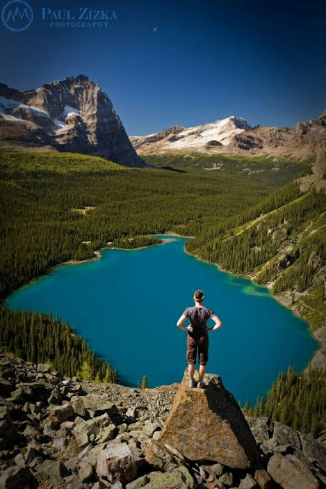 Lake O'Hara  Yoho national park  Alberta, Canada