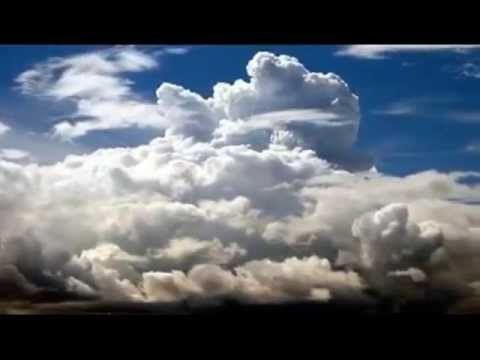 Leche - Tu Flor, Me Vuelves A Unir feat. Celeste Shaw