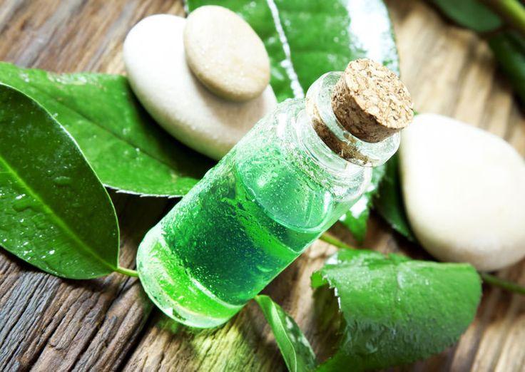 Tea Tree Oil for Sinus Polyps
