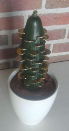 verjaardagskado: Geld cactus