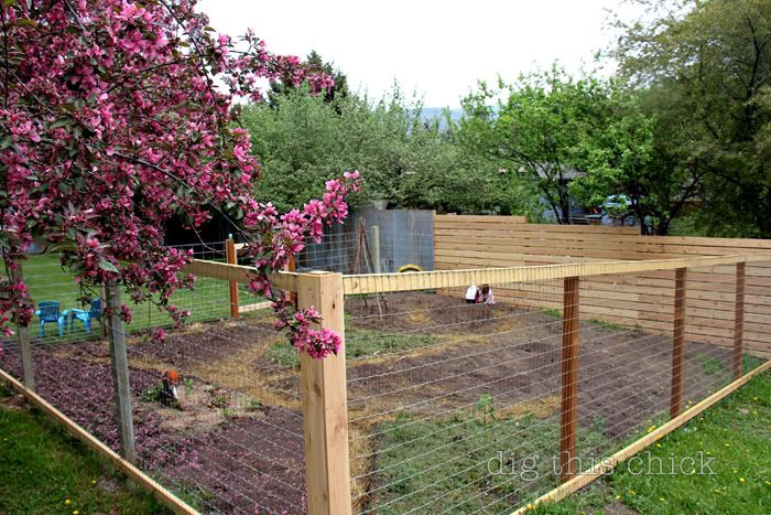 Corrugated metal fence, rainwall fence, and garden hog wire/wire fence {dig this chick}