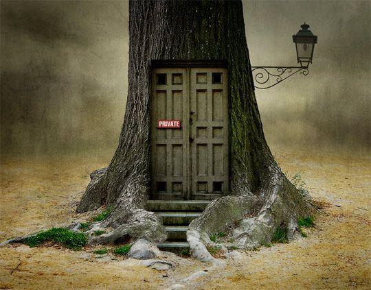 niceThe Doors, Magic, Photomanipulation, Ben Goossens, Fairies Home, Photos Manipulation, Organic Design, Trees House, Art Pictures
