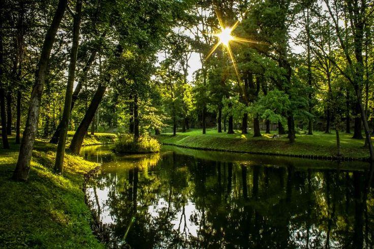 Park Szwajcaria (fot. A. Skwarek)