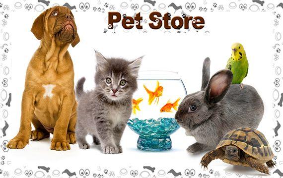 Super Pet Store Online Pet Store Pet Accessories Pet Day