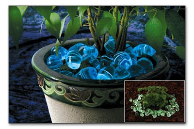 """Glow in the dark Garden Glitter rocks and blue Moon Rocks add unexpected after-dusk illumination to your potted plants, front walkway, flowerbeds or aquarium, thanks to luminescent crystals deep within the individual ½"""" rocks."""