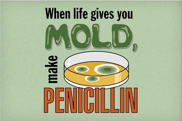 When life gives you mold, make penicillin. A whole new outlook on the lemons to lemonade mentality...