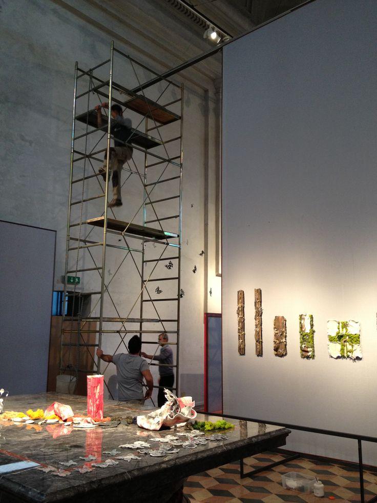 Man at work ! Installazione delle farfalle in porcellana per RINASCITA - DOPO IL DOMANI