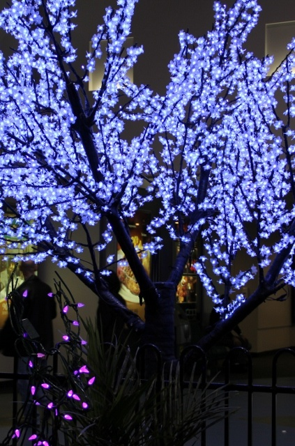 Amazing outdoor lighting - tree with blue lights. At The Interior Decorating Show. Holiday Home Decorating. http://pinterest.com/intlhomeshow/