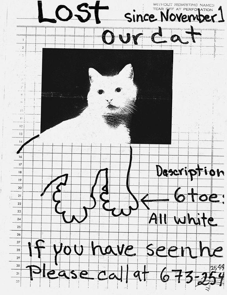 Image result for missing cat poster