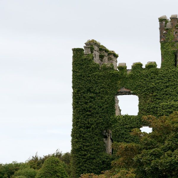 Menlo Castle / Blake's Castle Galway, Ireland tree sky landmark building ecosystem castle Ruins hill woody plant château rural area tower ancient history stone