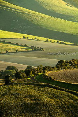 The Last Hours of Summer, South Downs National Park near Lewes, East Sussex, England | Slawek Staszczuk