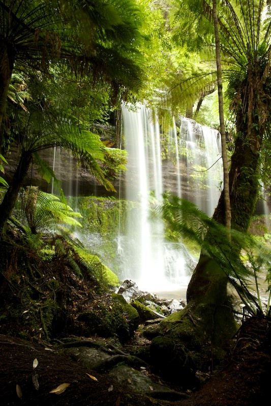 From our trip to Tassie last year - Russell Falls
