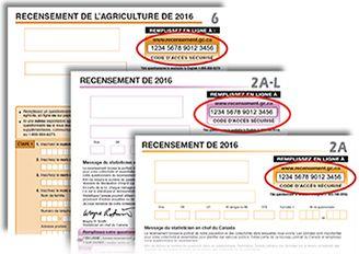 Image de la première page du questionnaire du recensement
