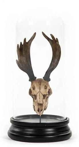 Sculpture Statue Moose Skull Animal Polyresin Glass New With Bell ZT-1728