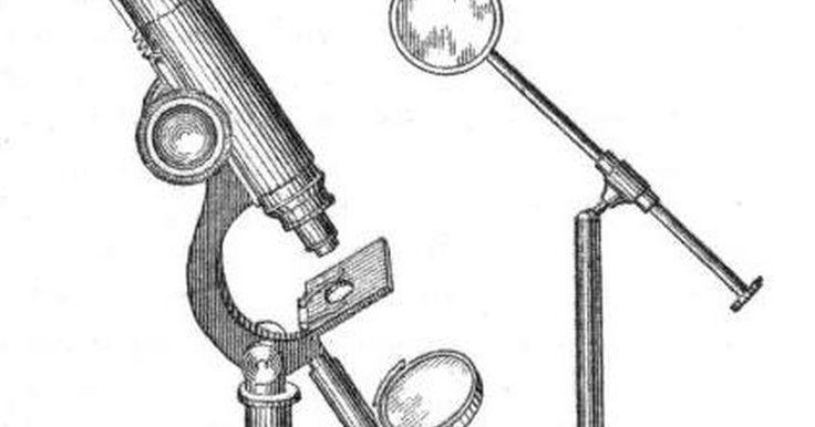 Por que os microscópios compostos invertem as imagens?. Um microscópio composto consiste de uma lente ocular e uma objetiva. Em muitos modelos, diferentes objetivas podem ser giradas, permitindo diferentes forças de ampliação. Tanto a ocular quanto a objetiva são lentes convergentes, o que significa que os raios de luz paralelos que entram na lente irão convergir para um ponto único (o chamado ponto ...