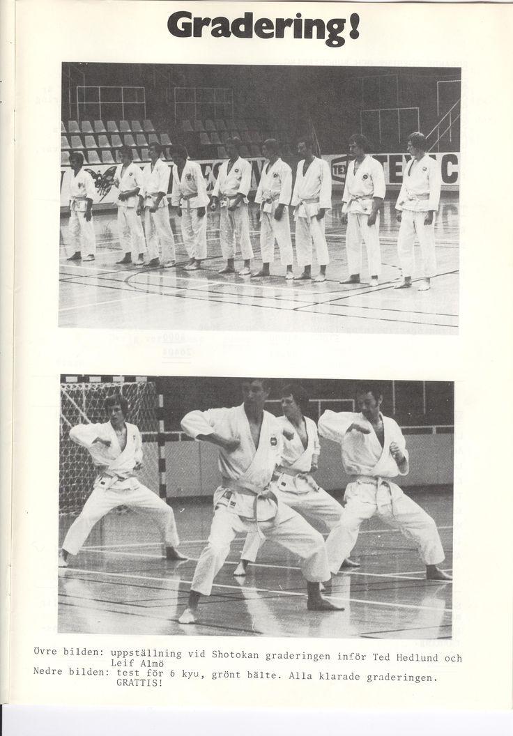 1978 Baltic Club Malmö Karate