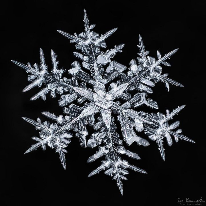 These Close-Up Photos Of Snowflakes Reveal A Surprising Fact… I'm Speechless. - http://www.lifebuzz.com/complex-snowflakes/