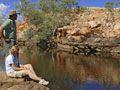 Ruby Gap: Binns-Track-whistle-duck-creek