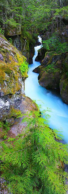 """Avalanche Gorge"" Jeffrey Murray Glacier National Park, Montana"