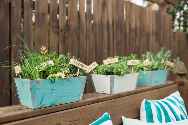 How to Plant a Mini Herb Garden for Your Porch | HGTV >> http://www.hgtv.com/design/make-and-celebrate/handmade/diy-portable-herb-garden?soc=pinterest