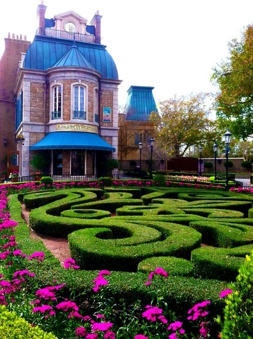 Disney World | Epcot | France